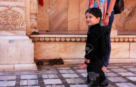 Young boy standing at Karni Mata Temple, Deshnok, India